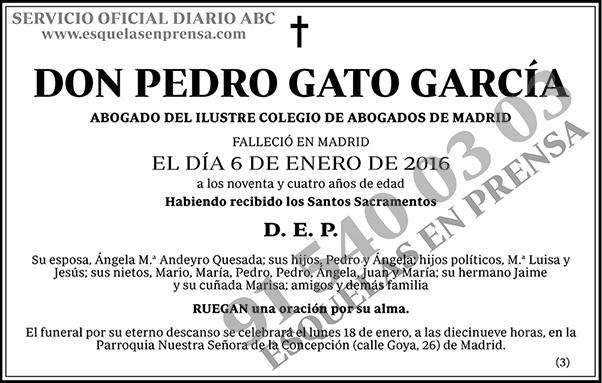Pedro Gato García